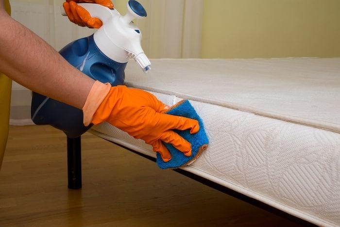 limpieza colchón